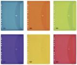 Elba Dokumentenhülle zum Abheften - A4, 6 Taschen, PP, transluzent, sortiert Dokumententasche A4